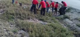 Invilara ejecuta plan de limpieza integral en la Circunvalación Norte