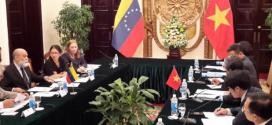 Instalada VII mecanismo de Consulta Política Venezuela-Vietnam