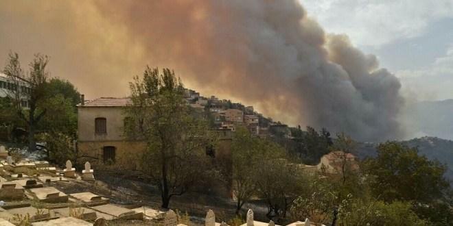 Venezuela se solidariza con Argelia por daños ocasionados por incendios forestales