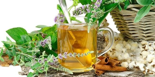 DESCUBRE SUS BENEFICIOS / El laurel ayuda a deshacerse de muchos problemas de salud y enfermedades