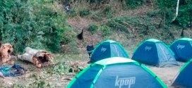 Murió estudiante de la Unes al caerle árbol en su carpa