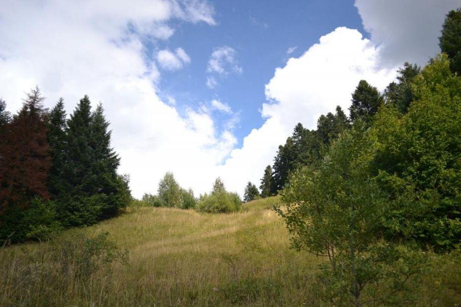 priveliste rosia montana - incredibila senzatia