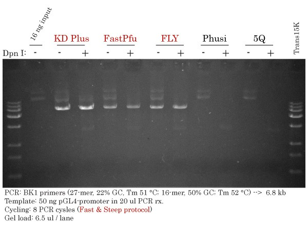 AT-rich 6.8 kb PCR with FastPfu FLY