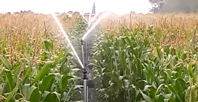 sprinkler irrigation advantages
