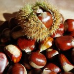 SURVEY ON WITNESS STATEMENTS: WORKING PARTY SURVEY:  A REMINDER OF PAST COMMENTS ... SOME CHESTNUTS HERE