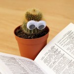 CIVIL LITIGATION REVIEW OF 2018 3: THE OPENING LINES OF JUDGMENTS:  THE CACTI WINS IT...
