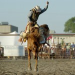 """GUIDANCE ON INSTRUCTING EXPERTS (1): GUIDANCE FROM THE LAWYERIST: """"MUCH LIKE A COWBOY HERDING CATTLE"""""""