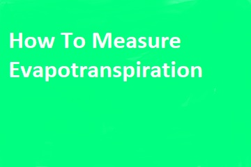 How to Measure Evapotranspiration