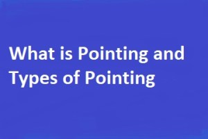 What is Pointing and Types of Pointing in Building Construction