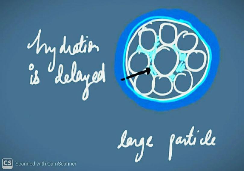 Large Particle