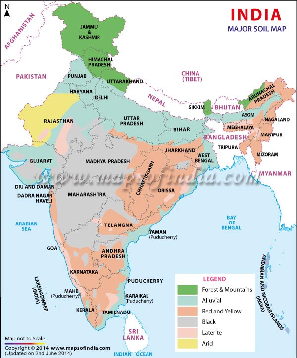 which soil is the most widespread soil of india