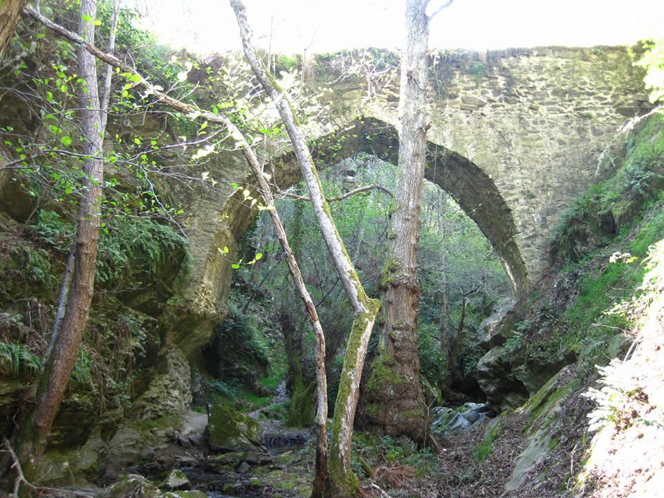 Puentes Malpaso 21