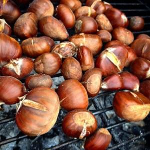 chestnuts-951529_1920