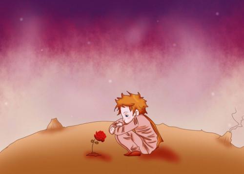El Principito Y La Rosa