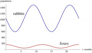 Rabbit and Fox populations graphs