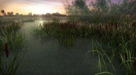 cjparis_wetlands_01