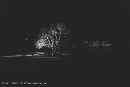 Åsele by night