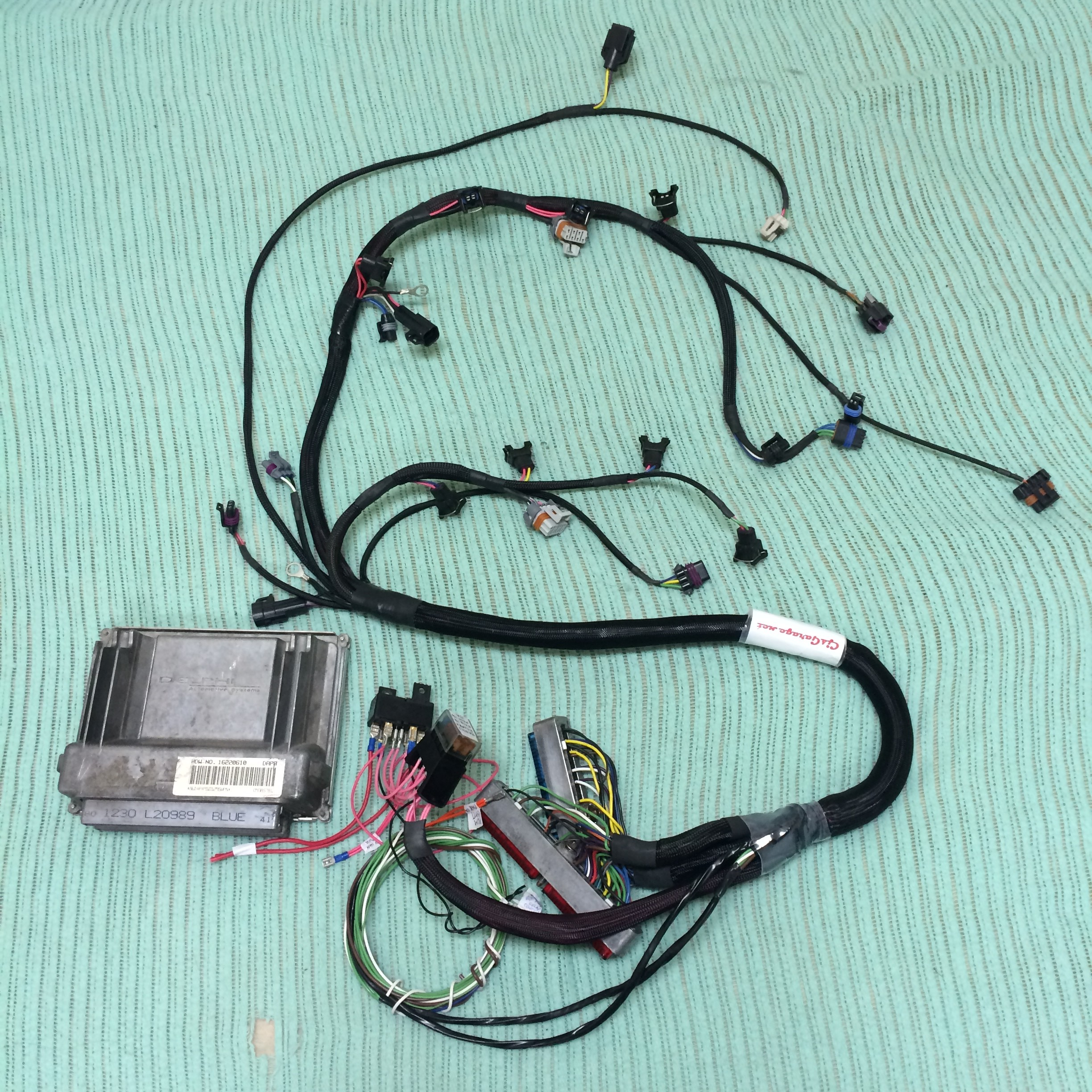 GM LS engine harnesses – Under the Hood