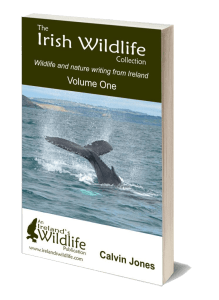 The Irish Wildlife Collection Volume One