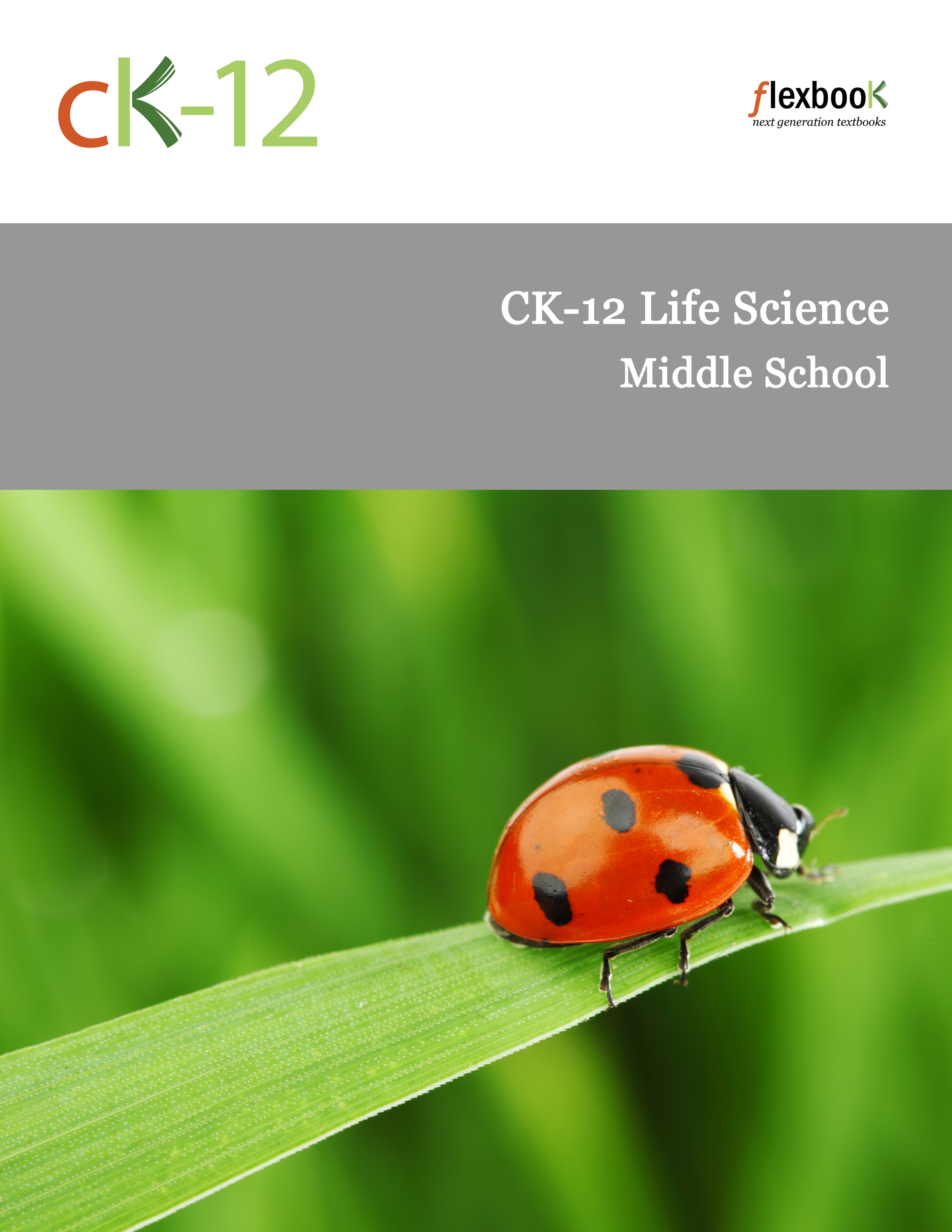 Microorganisms Worksheets Life Science Middle School