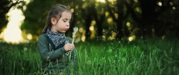 Aké je skutočné poslanie školy v prírode?