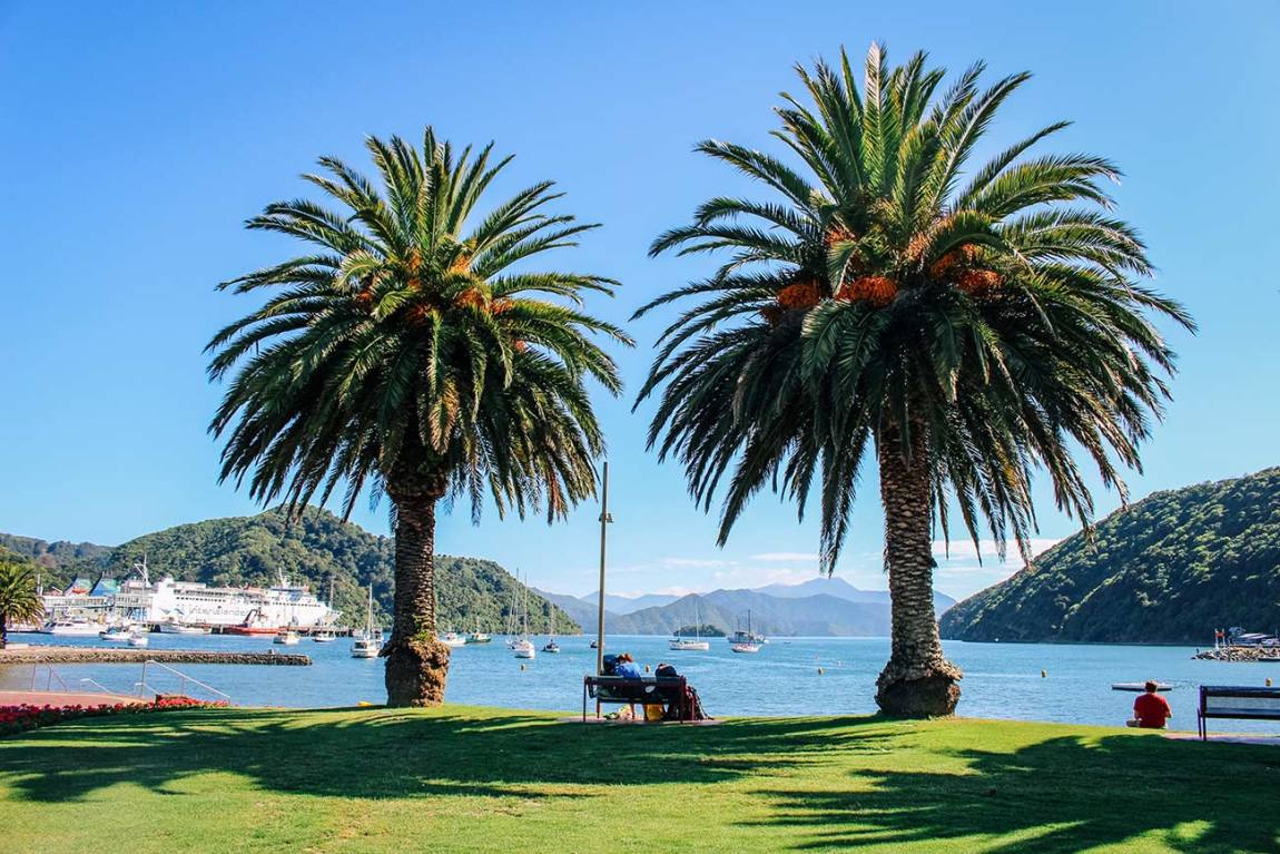 Wellington to Christchurch road trip - 7 day / 1 week itinerary