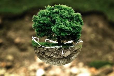 environmental-protection