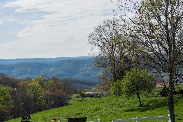 Clear Creek Farms (3)
