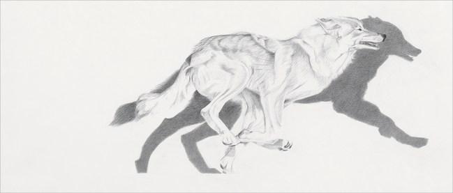 Run-©brandt2010