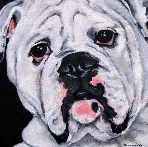 Pet Portrait | Bugati | Claire Dunaway Studios