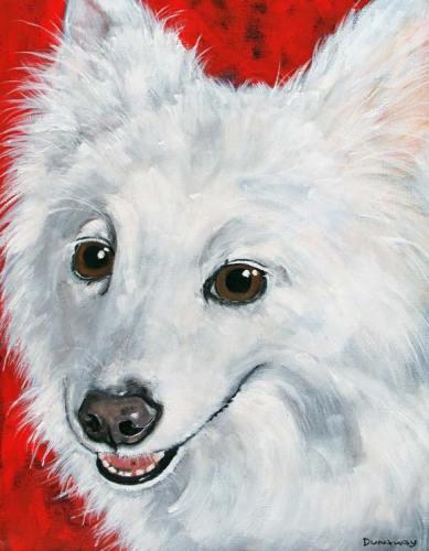 Pet Portraits | Quita | Claire Dunaway Studios