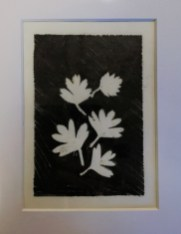 Hawthorn, monotype, unique, 12x17cm, £3