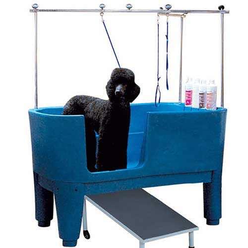 Vasca per cani in polietilene fissa su piedi blu