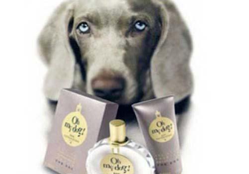Cane con profumo oh my dog