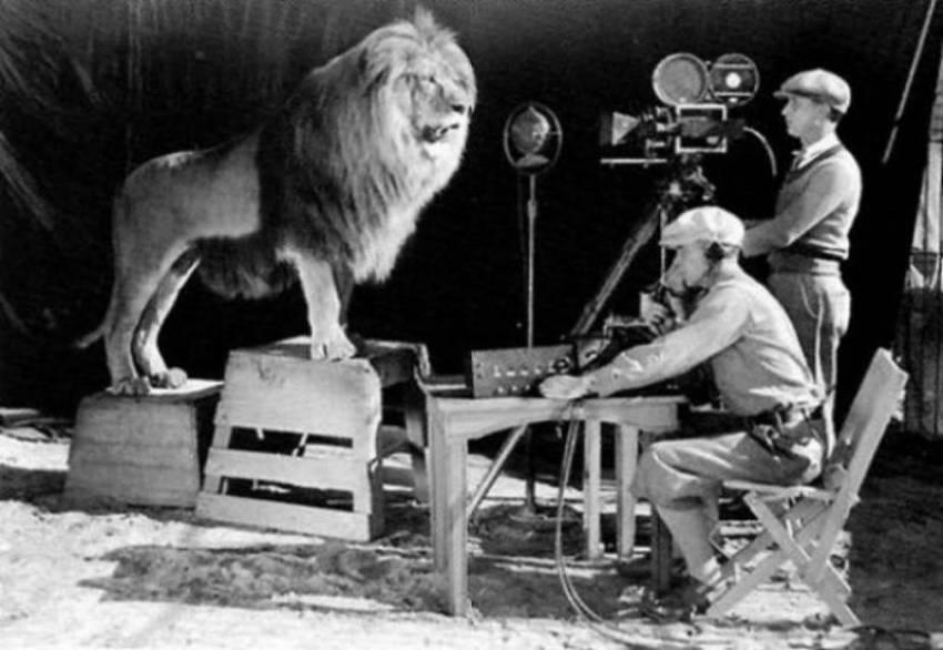 16. Filmagem do filme Leo o Leão nos estudios da MGM.