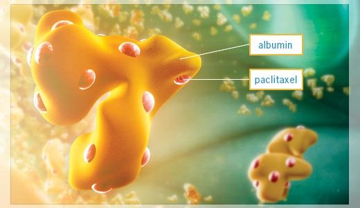 The APACT Study in Pancreatic Cancer