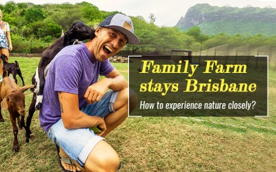 Family Farm Stays Brisbane – How to experience nature closely?