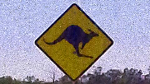 Roo Crossing