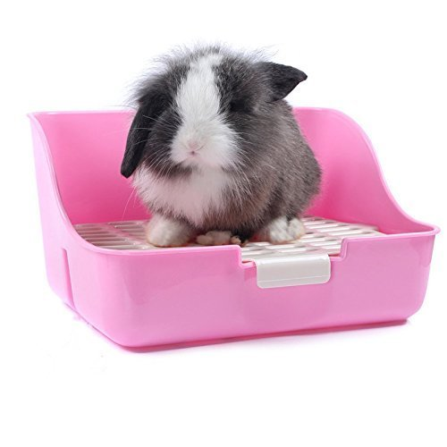 Bac à litière pour lapins cochons d'Inde les chinchillas Petits Animaux avec fixe Définit WC d'entraînement