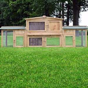 Zooprimus abris cages pour petits animaux grande cage clapier extérieur en bois pour lapins Docteur Lièvre – largeur totale 2,48 m