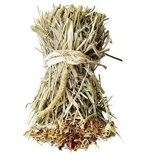 Versele-laga – Rouleau de Foin Timothy enrichi de dent-de-Lion et d'origan 70G pour Rongeur – VS-461447