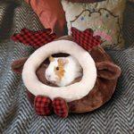 Xeroy Lit de grotte de lapin d'Inde, linge de lit de maison accueillant pour racines, furets de Chinchilla, hérisson, hamster, nid de coton, habitat pour animaux domestiques
