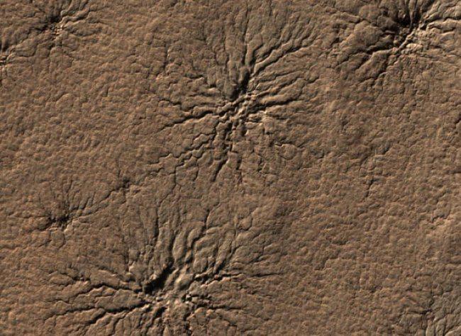 spiders on Mars