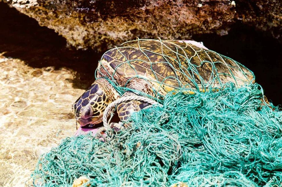 80 Of Ocean Plastic Es From Land Based Sources New Report Finds