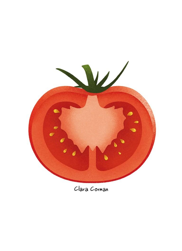 FRUITS ET LÉGUMES DE SAISON - Clara Corman