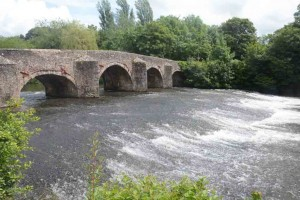 The weir at Fisherman's Cot, near Tiverton.