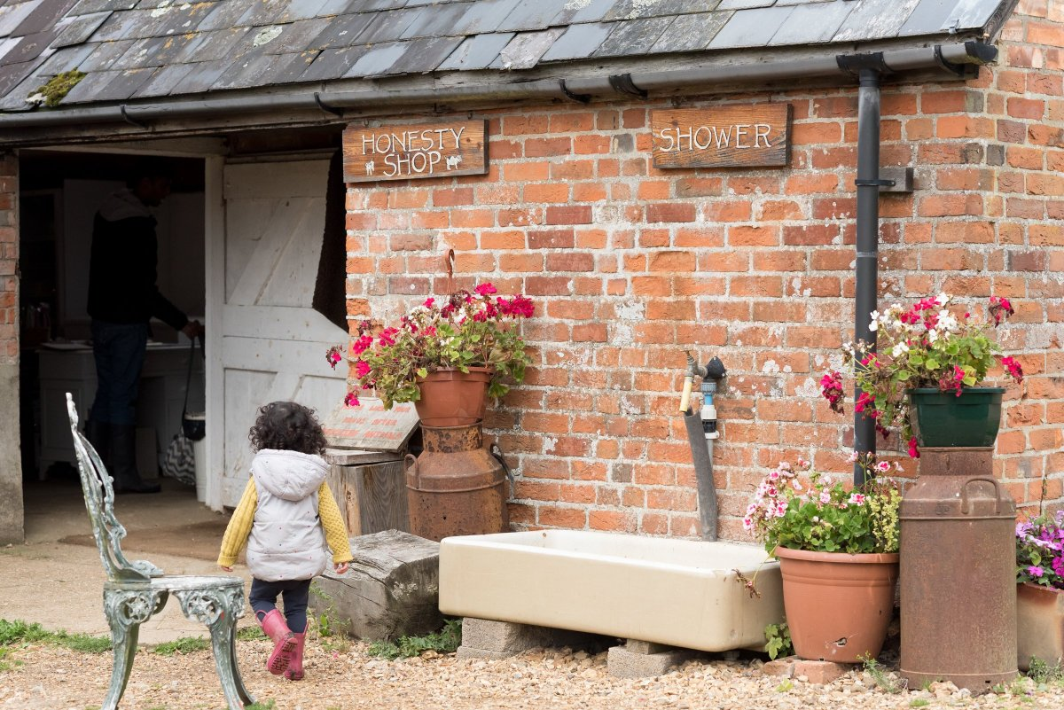 Featherdown Farm images New Forest