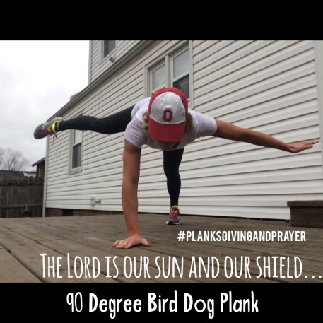 90 degree bird dog plank : peak313.com
