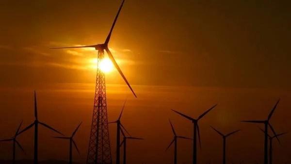 Granjas eólicas. Argentina tiene un potencial envidiable en aerogeneración.