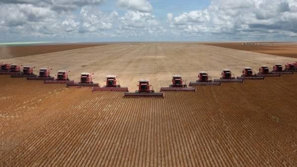 En las últimas dos décadas, la cosecha brasileña creció a un ritmo del 16% anual, según la Bolsa rosarina.